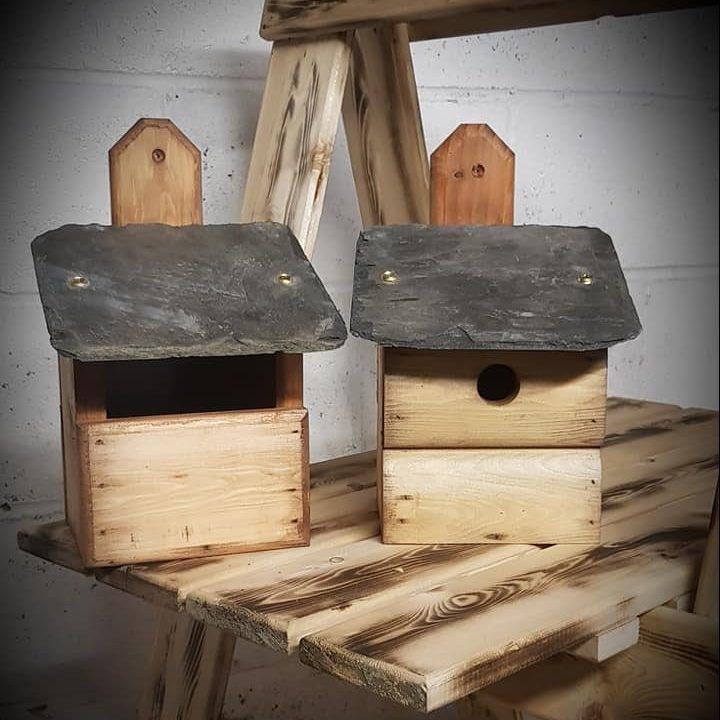 Bird Box Set